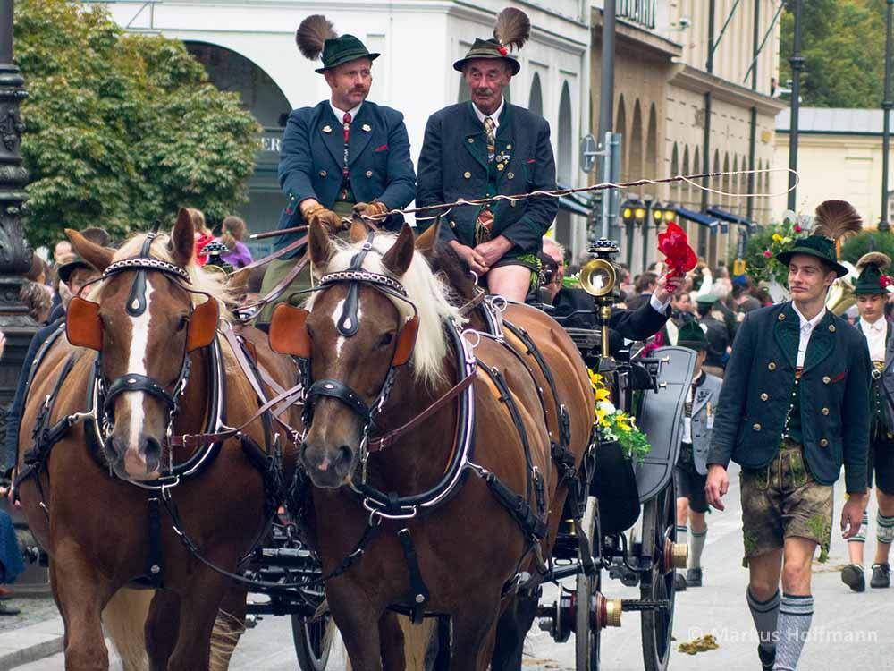 Pferdekutscher-Gamsbart.jpg